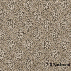 Harbour Town- Indoor Area Rug Collections - 710 Parchment