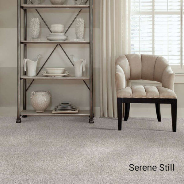 Quiet Sanctuary Shag Area Rug Collection - Serene Still Room