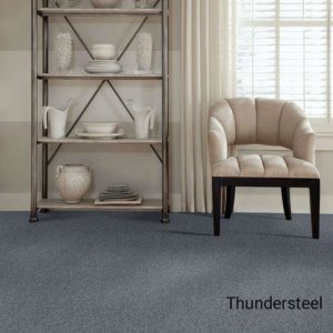 Quiet Sanctuary Shag Area Rug Collection - Thundersteel Room