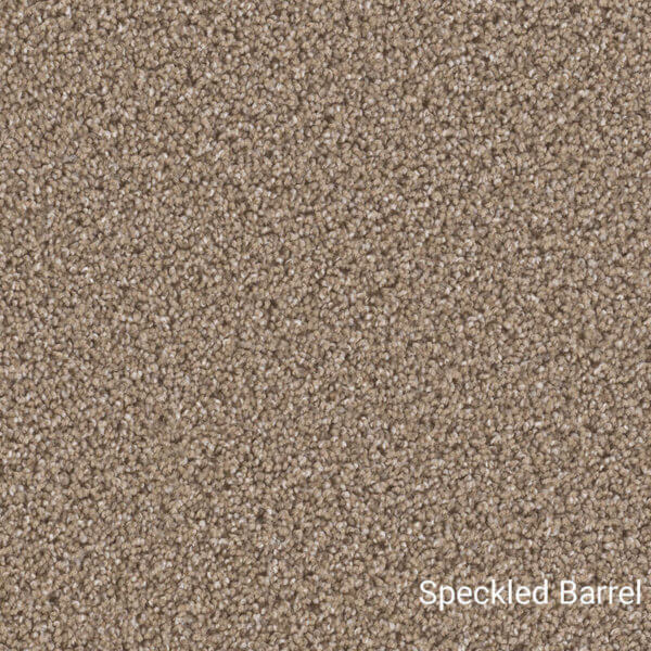 Economical Solutions Indoor area rugs collection - Speckled Barrel