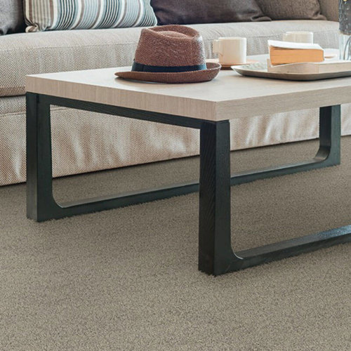 Heavenly Ultra Soft Area Rug Collection