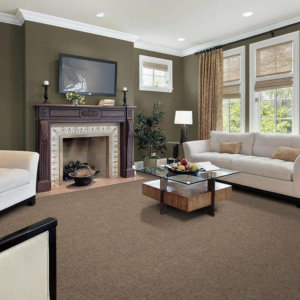 Milliken Techtone Indoor Area Rug Collection - Room