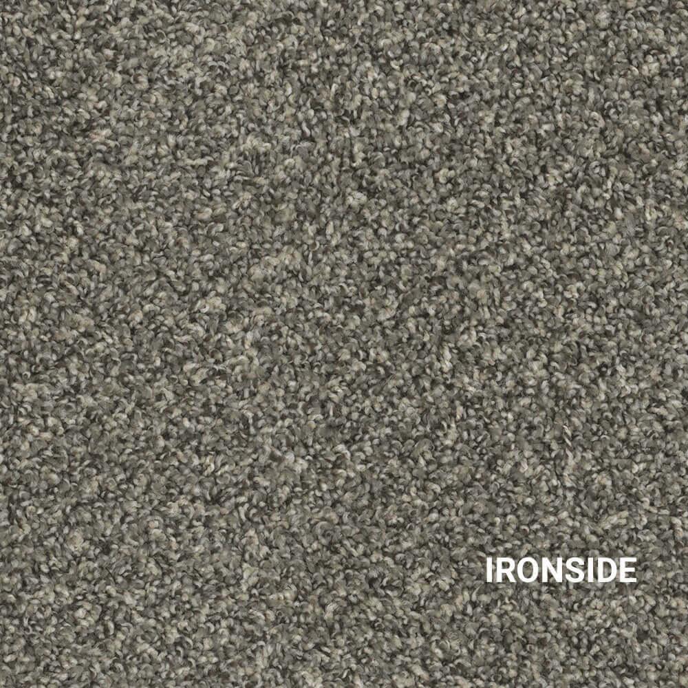 Ironside Indoor Area Rug