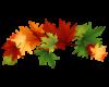 September-leaves